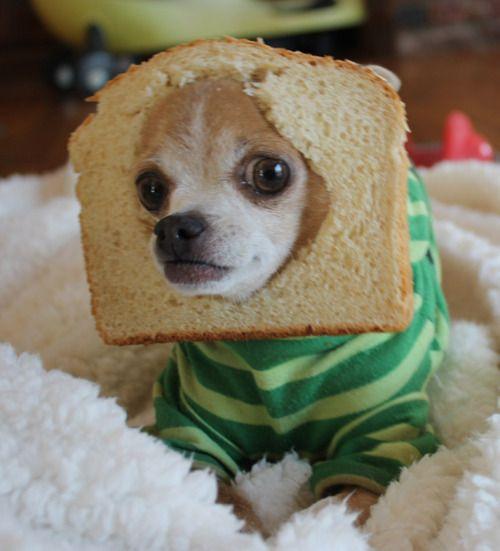 #breadfacing
