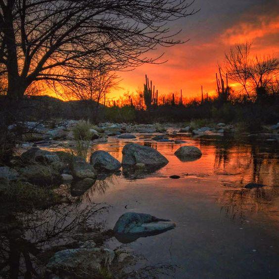 Bear Canyon   Tucson   Arizona   Photo via Instagram by @allophile_: