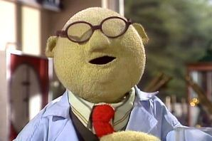 Google Image Result for http://images3.wikia.nocookie.net/__cb20051216034227/muppet/images/9/92/Bunsen.jpg:
