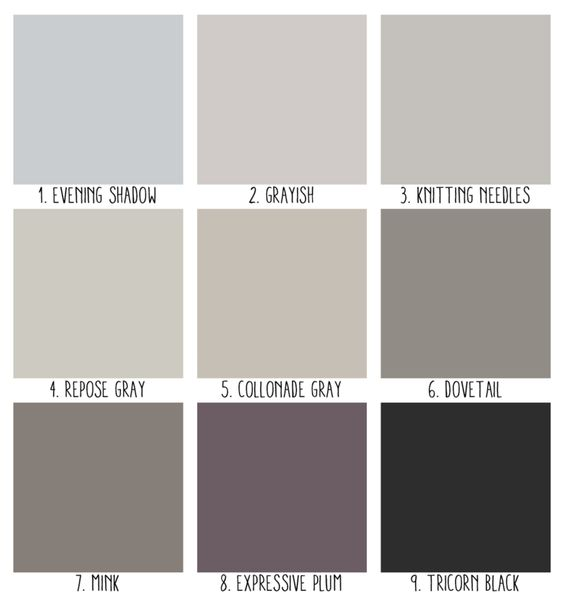 Popular nice and mink on pinterest Most popular accent wall colors
