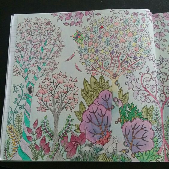 Colored by: S Field.  #JohannaBasford  #EnchantedForest  #ColoringBooks  Left side of 2pg picture