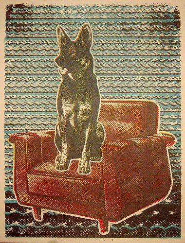 poster cachorro na cadeira