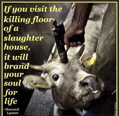 If you visit the killing floor of a slaughter house, it ...