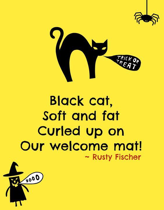 Black cat... A Halloween Poem
