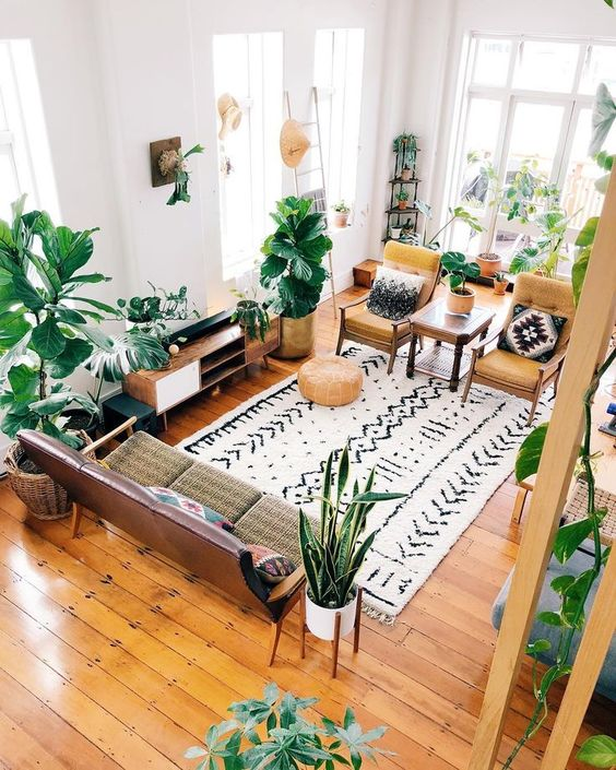 plant filled living room