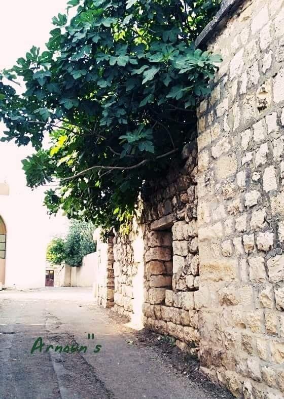 بيوت قديمة في ارنون جنوب لبنان Old Houses Photography Sidewalk