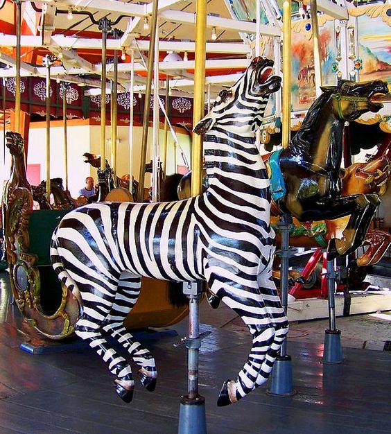 Herschell-Spillman Carousel by Maia C,