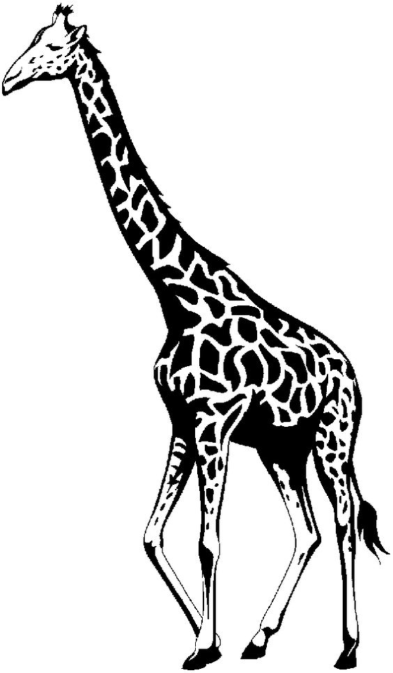 Giraffe Line Drawing