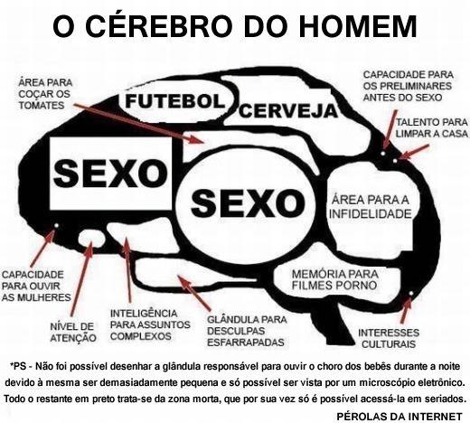 Cérebro do homem