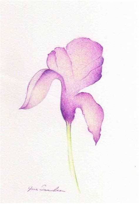 Image Result For Iris Flower Drawing Easy Tatuajes Minimalistas Dibujos Acuarela