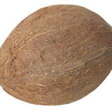 Paper Mache Coconut {tutorial}