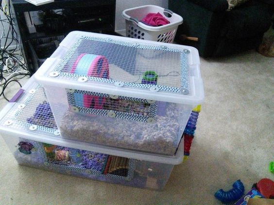 Hamsters dwarf hamsters and hamster cages on pinterest for Diy hamster bin cage