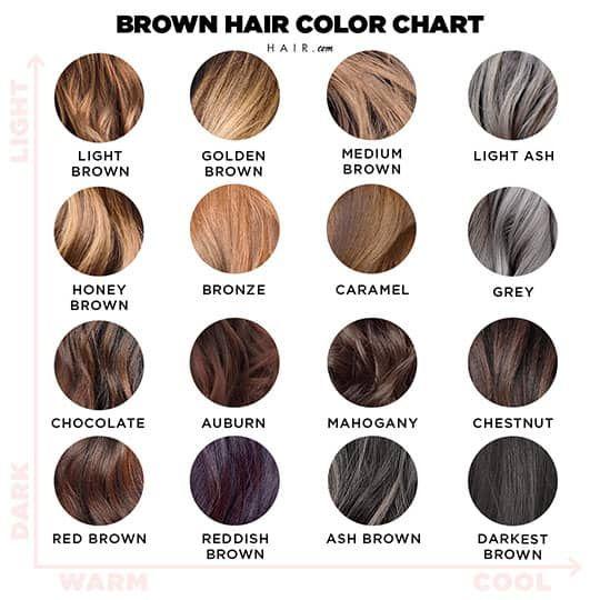 Shades Brown Hair Color Chart Brown Hair Color Chart Golden Brown Hair Color Brown Hair Color Shades
