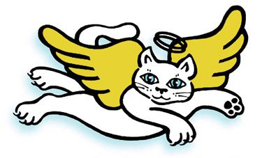 Image result for cat angel: