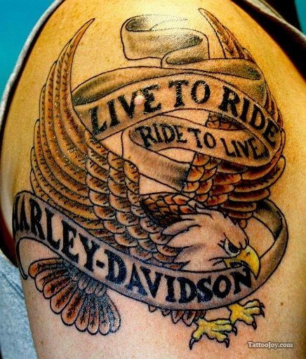 live to ride harley davidson eagle tattoo tattoos pinterest harley davidson adler tattoos. Black Bedroom Furniture Sets. Home Design Ideas