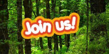 Blog | Kiwi Conservation Club