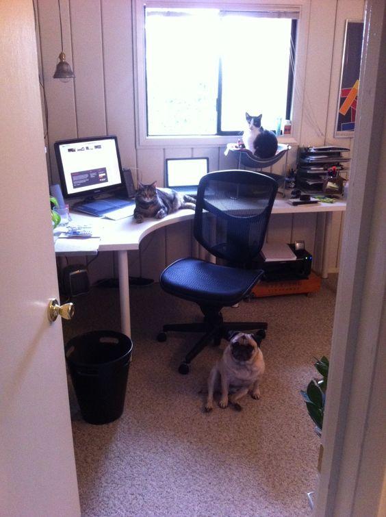 Artsy Geek Art Department - Seattle Office