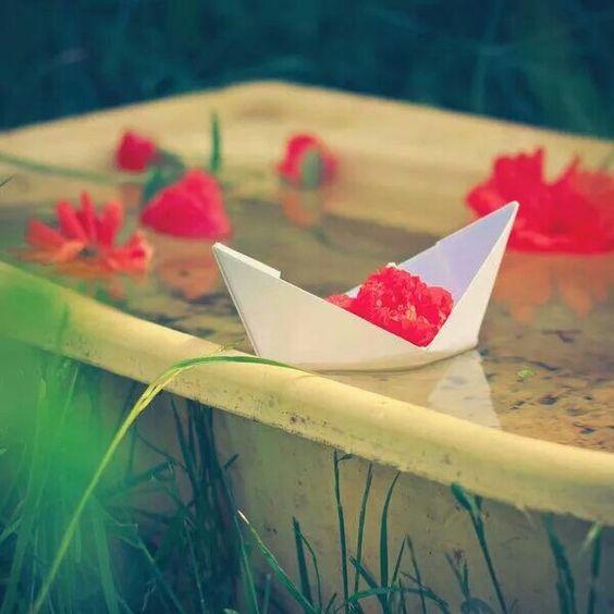 #mar de rosas