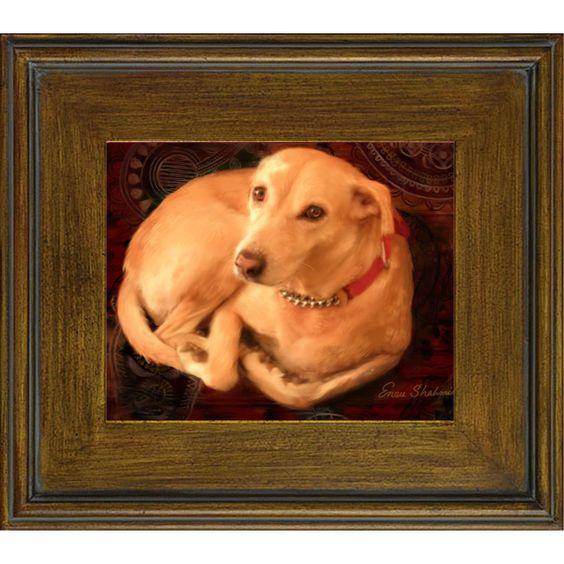 Precious Dog Portrait of a Stray