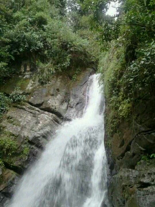 Cascada en El Yunque, ....P.R.