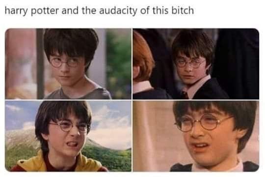 Fandom Funny Harry Potter Memes Harry Potter