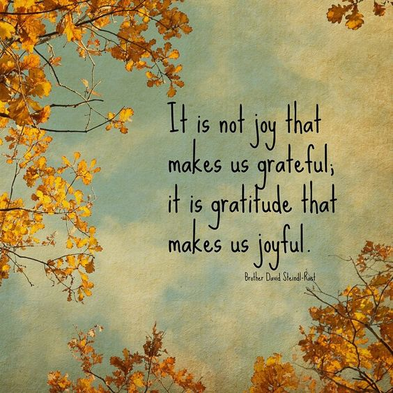 Brene Brown Quote - Wishing you a brave and full heart this Thanksgiving!
