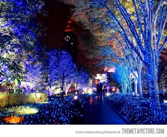 Christmas Lights In Tokyo Japan Nagoya Natale Giappone