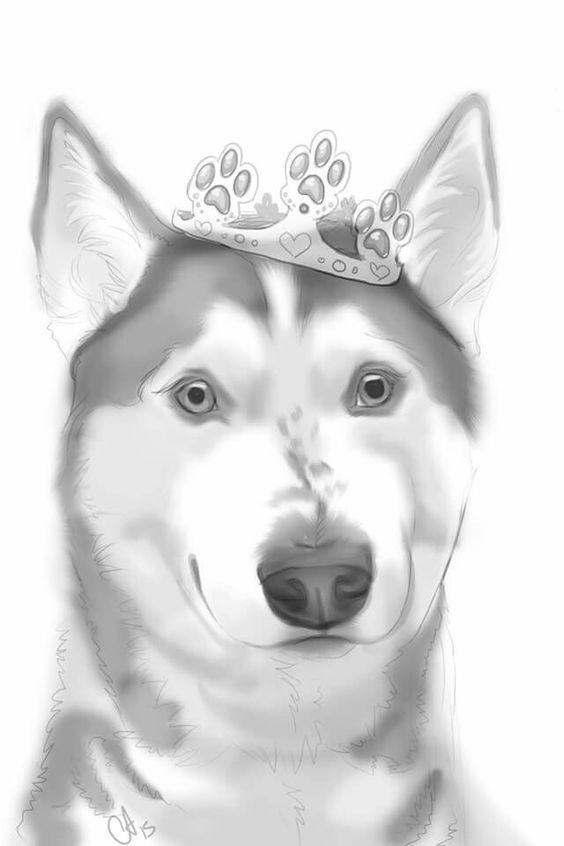 Beautiful drawing.