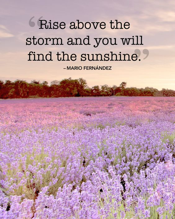 "Inspirational quotes and sayings about summer: ""Rise above the storm and you will find the sunshine."" -Mario Fernández"