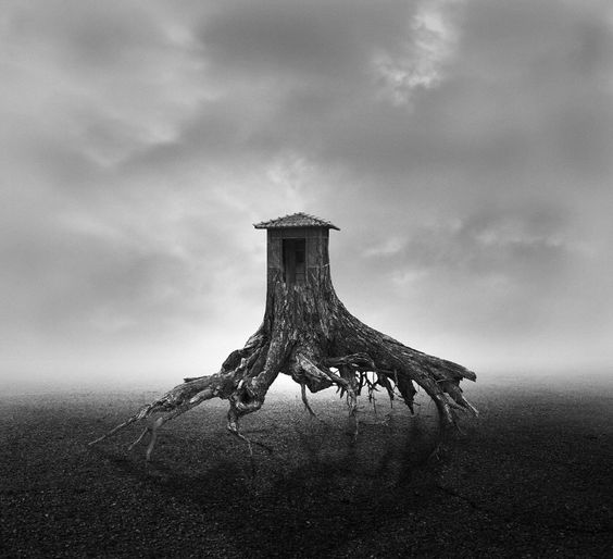 Georges Christakis