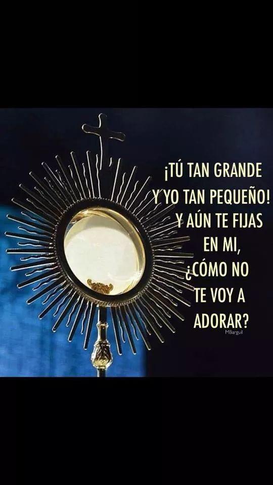 Pin De Juan Guzman En Eucaristía Eucaristía Frases