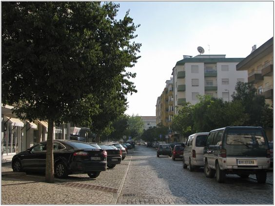 Rua Maestro Fernando Carvalho - Rio Maior | Portugal