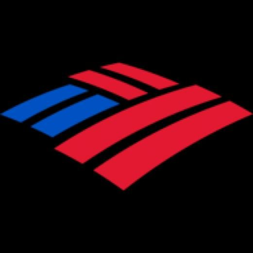 Welcome To Bank Of America Home For All Of Your Financial Needs Our Purpose Is To Help Make Financial Lives B In 2020 Investment Banking Bank Branding Bank Of America