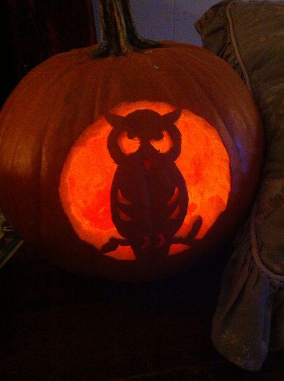 Daughters owl