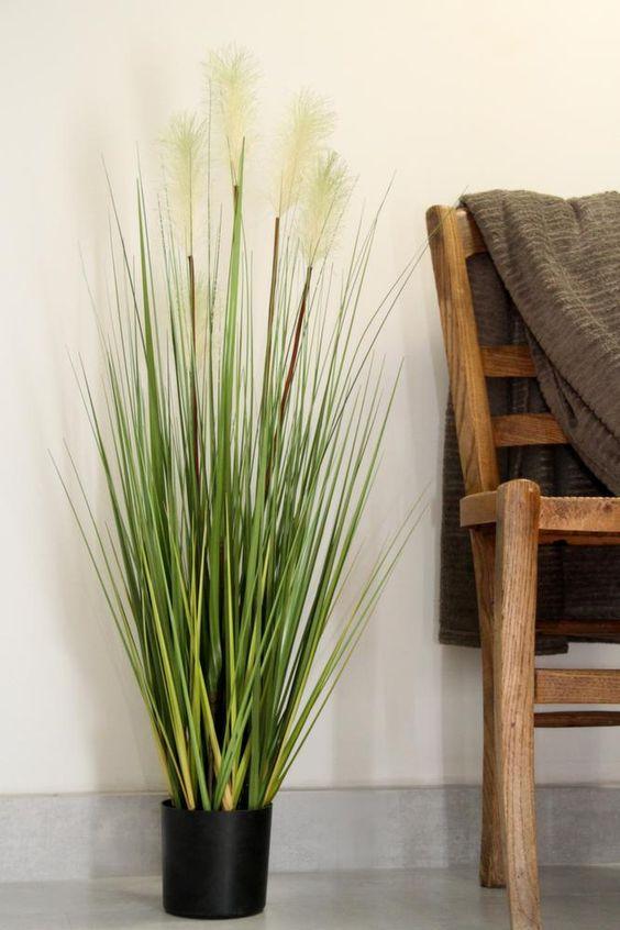 pots on pinterest. Black Bedroom Furniture Sets. Home Design Ideas