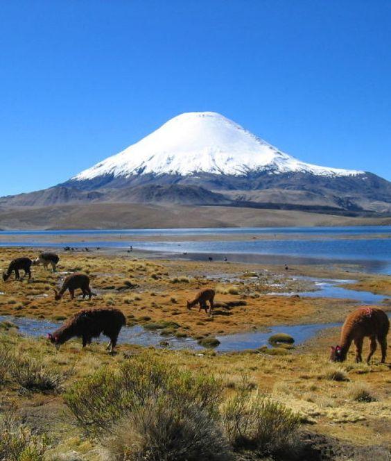 Parque Nacional Sajama, na Bolívia: