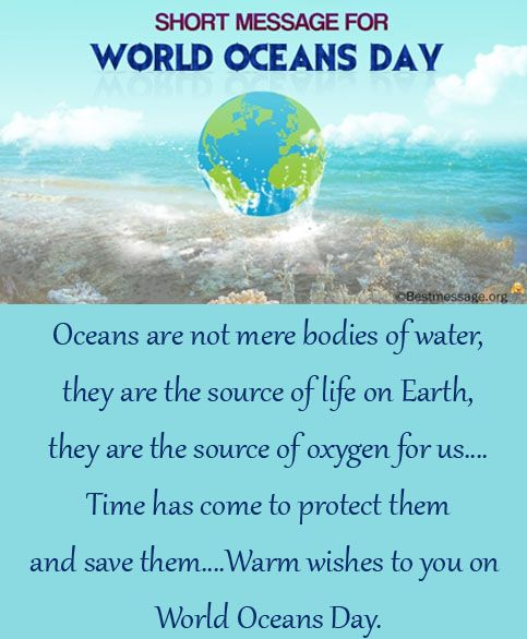 Send inspiring World Oceans Day text messages and quotes to family and friends. Share your thoughts on this special occasion with your loved ones to save sea.