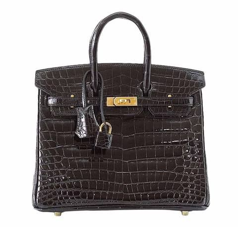 Hermes Birkin 25 Bag In Alligator