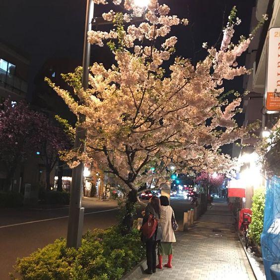 Nice Saturday evening walk