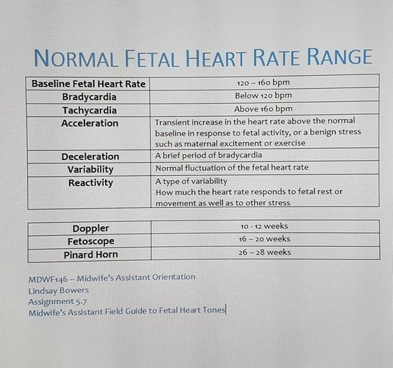 Fetal Heart Rate Chart By Week Erkalnathandedecker