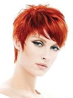 Bold Hair Color Ideas 2010 But it's the cut I really like