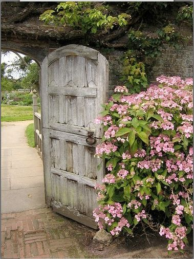 Garden Gate Ideas and Beautiful Gardens to Inspire! A rustic arched door with pink blooming bush nearby in the French countryside leads to a lush secret garden. #gardengate #rusticdecor #secretgarden #provence #frenchcountry