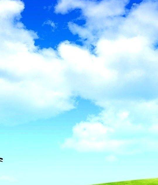 31 Very Beautiful Full Screen Nature Wallpaper For Mobile Di 2020