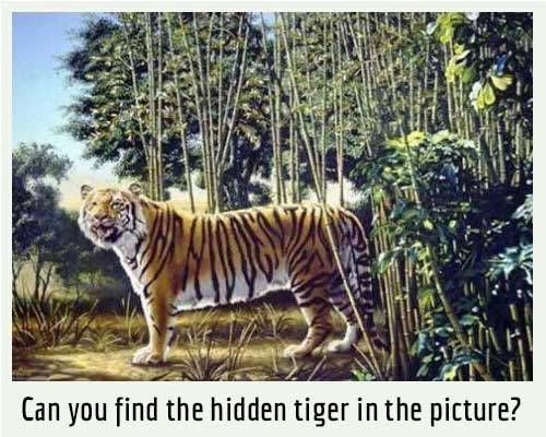 Picture Riddle : Can you find the hidden tiger in the picture? | Fun Things To Do When Bored