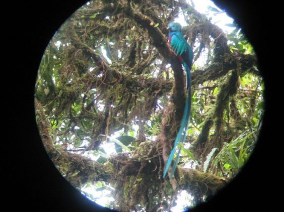 Surviving the Road to Monteverde