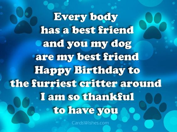 Pin On Happy Birthday Wishes For Best Friend
