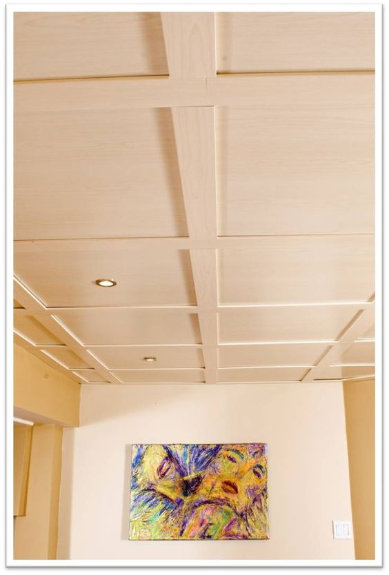 Magnifique plafond suspendu avec encastr s diy for Modele de plafond suspendu
