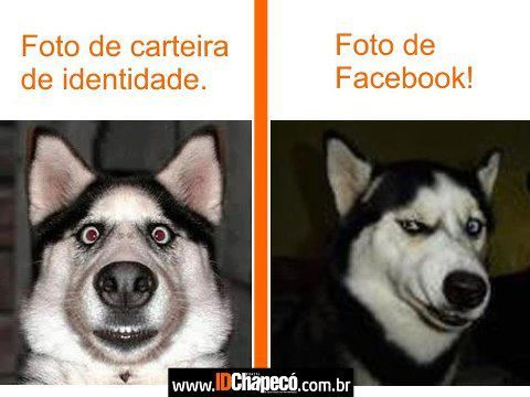 Identity Picture x Facebook Picture