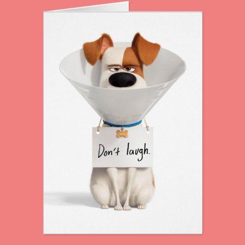 Pin On Secret Life Of Pets Birthday