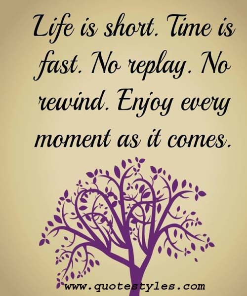 Enjoy Every Moment Life Quotes Life Quotes Life Quotes To Live By Quotes